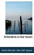 British Birds in Their Haunts