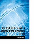 The Trail of the Hawk; A Comedy of the Seriousness of Life