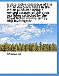 A Descriptive Catalogue of the Indian Deep-Sea Fishes in the Indian Museum: Being a Revised Account