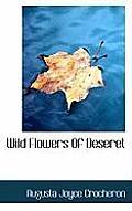Wild Flowers of Deseret