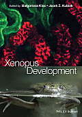 Xenopus Development