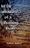 In the Shadow of a Burning Bush: Poems on Exodus