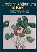 Breeding Anthuriums in Hawaii