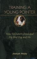 Training a Young Pointer: How the Experts Developed My Bird Dog and Me