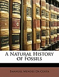 A Natural History of Fossils
