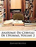 Anatomie Du Cerveau de L'Homme, Volume 2
