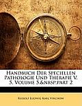 Handbuch Der Speciellen Pathologie Und Therapie V. 5, Volume 5, Part 2