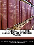 The Global Need for Access to Safe Drinking Water