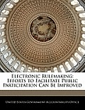 Electronic Rulemaking: Efforts to Facilitate Public Participation Can Be Improved