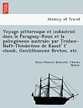 Voyage Pittoresque Et Industriel Dans Le Paraguay-Roux Et La Palinge Nesie Australe; Par Tridace-Nafe -The Obro Me de Kaout' T' Chouk, Gentilhomme Bre