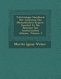 Vollst Ndiges Handbuch Der Anatomie Des Menschlichen K Rpers: Zun Chst Fur Die Betstzer Des Anatomischen Atlasses, Volume 3
