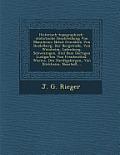 Historisch-Topographisch-Statistische Beschreibung Von Mannheim: Nebst Gemalden Von Heidelberg, Der Bergstrasse, Von Weinheim, Ladenburg, Schwezingen,