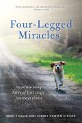 Four Legged Miracles Heartwarming Tales of Lost Dogs Journeys Home