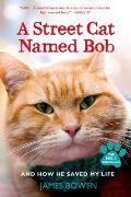 Street Cat Named Bob & How He...
