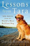 Lessons from Tara: Life Advice from the World S Most Brilliant Dog