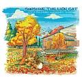 Sunshine the Lion Cat