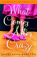 What Comes After Crazy Cover