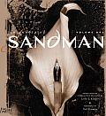 Annotated Sandman 1