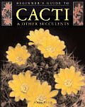 Beginners Guide To Cacti & Other Succulents