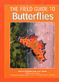 The Field Guide to Butterflies