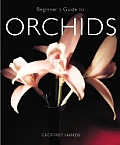Beginners Guide To Orchids