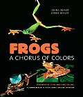 Frogs A Chorus Of Colors