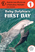 Baby Dolphin's First Day (American Museum of Natural History - Level 1)