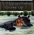 A Hippopotamus Grows Up (Wild Animals) Cover