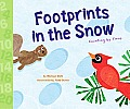 Footprints in the Snow: Counting by Twos Cover