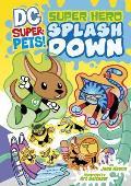 Super Hero Splash Down (DC Super-Pets)