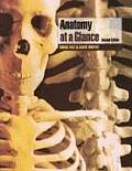 Anatomy At a Glance (2ND 06 - Old Edition)