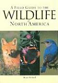 Field Guide To The Wildlife Of North America