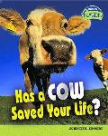 Has a Cow Saved Your Life?