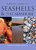 Pocket Guide To Seashells & the Seashore