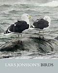 Lars Jonssons Birds Paintings From a Near Horizon