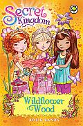 Secret Kingdom 13: Wildflower Wood