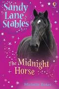 Midnight Horse