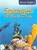 Animal Kingdom Sponges & Other Minor Phy