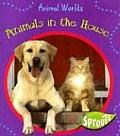 Animals In The House