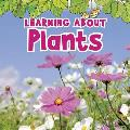 Learning about Plants