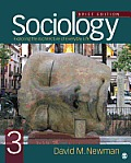 Sociology Exploring The Architecture Of Everyday Life Brief Edition