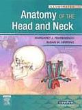 Illustrated Anatomy Of The Head & Neck