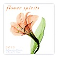 Cal13 Flower Spirits Mini