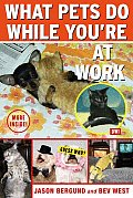 What Pets Do While Youre At Work