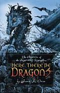 Imaginarium Geographica 01 Here There Be Dragons