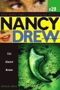 Nancy Drew: Girl Detective #29: The Stolen Bones