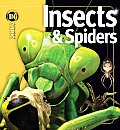 Insects & Spiders (Insiders)