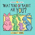 What Kind of Rabbit Are You? (Preschool Pop-Ups)