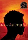 Copper Sun Cover