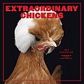 Extraordinary Chickens Calendar